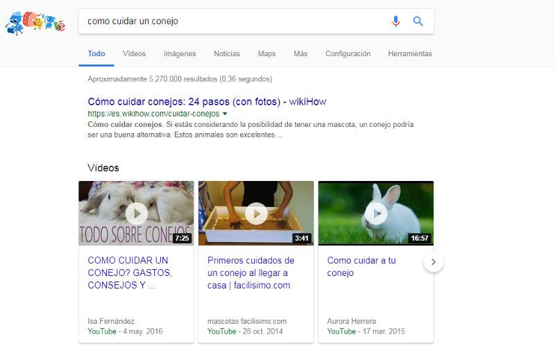 Cómo cuidar un conejo SERPs