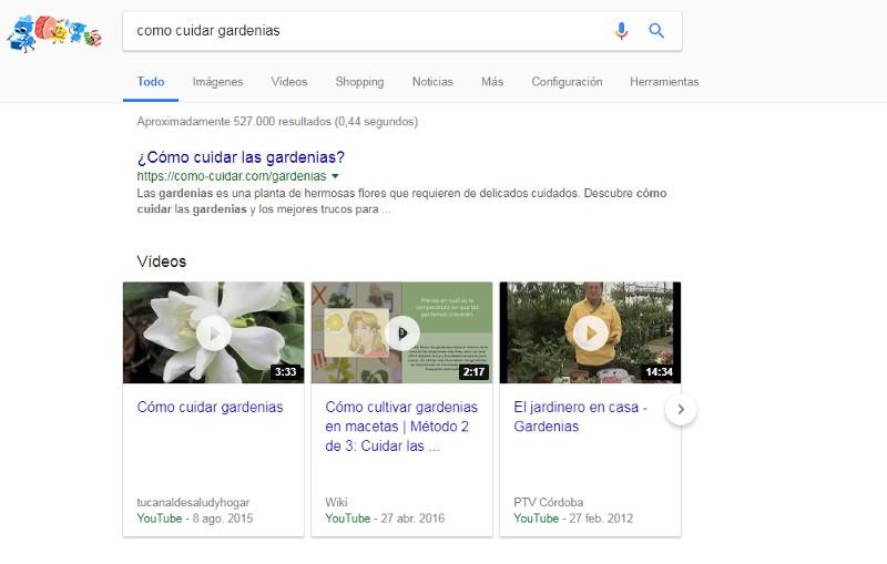 Cómo cuidar una gardenias SERPs